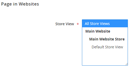 5_Store View