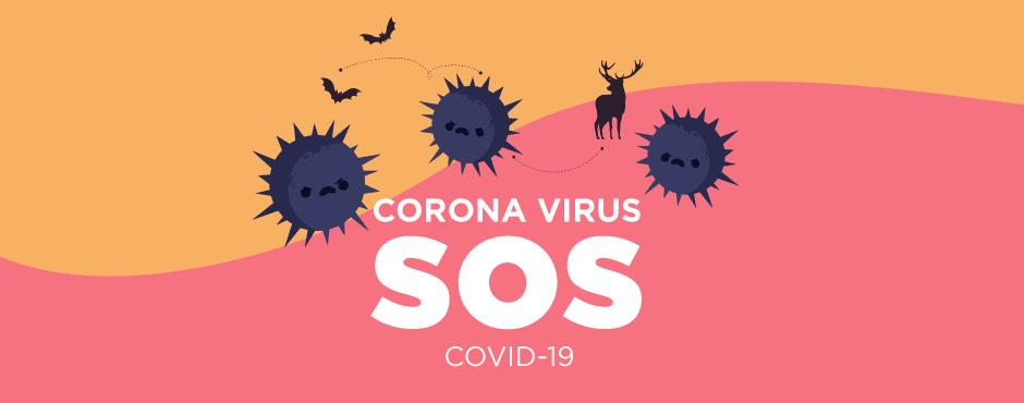 Coronavirus - Causes, Symptoms, & Precautions - Meetanshi