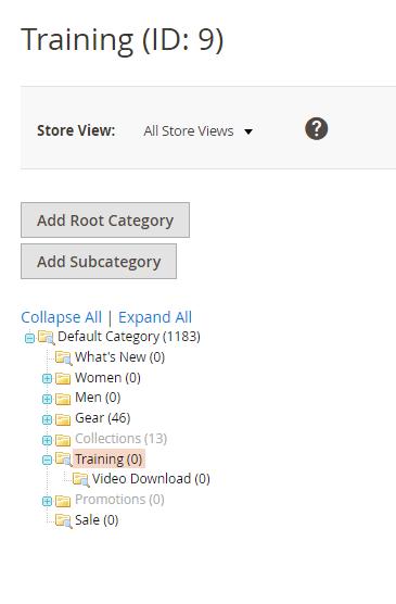 How to Hide Categories in Magento 2 1