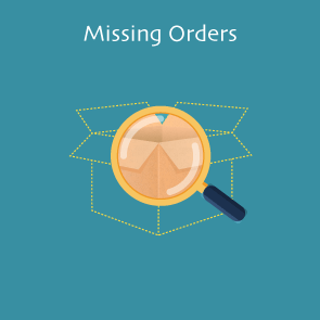 Magento 2 Missing Orders Thumbnail